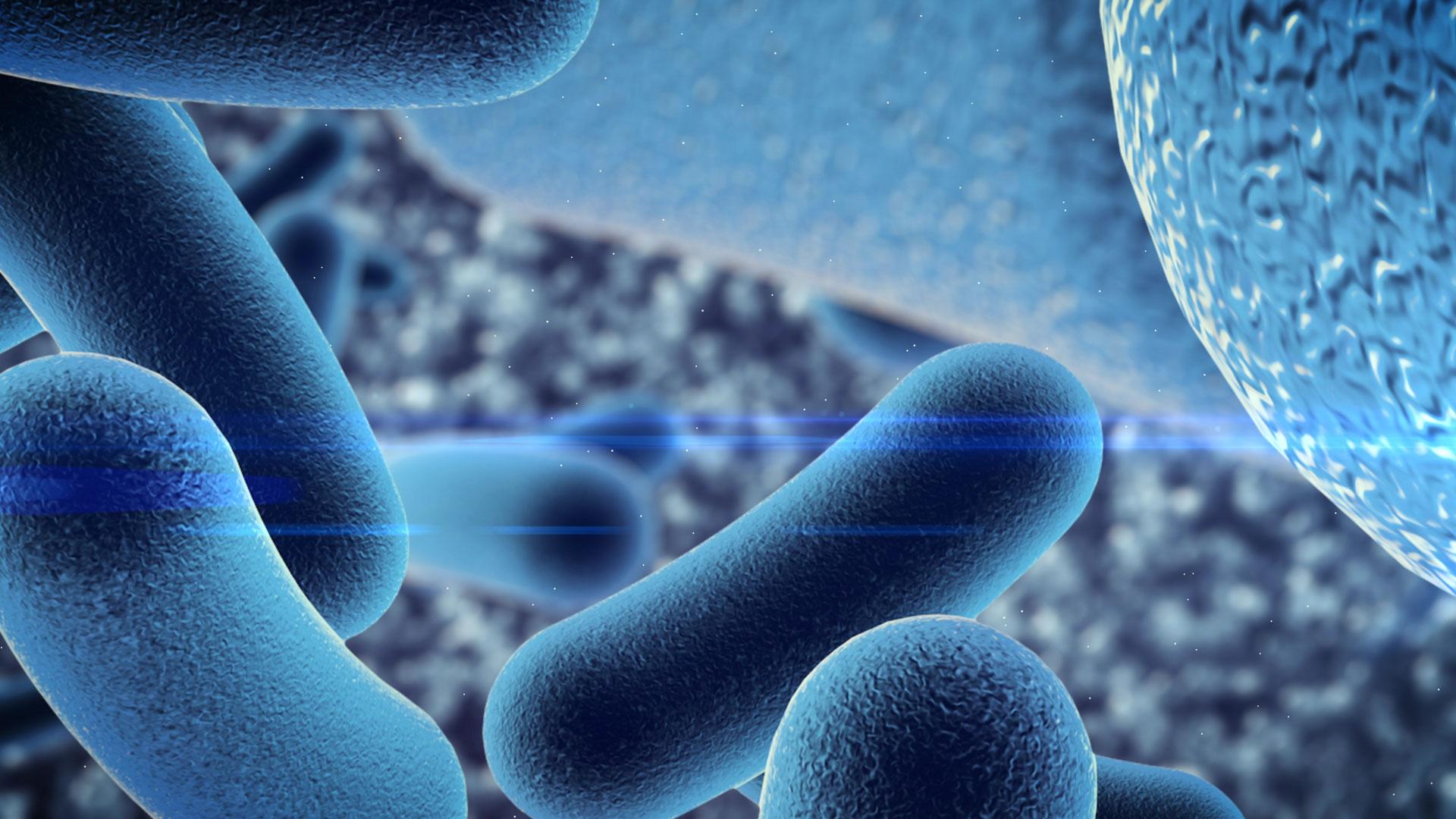 atmospheric bacteria